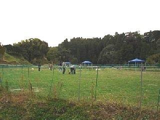 2005112010.jpg