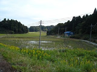 200511208.jpg