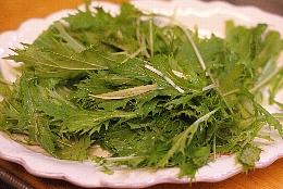 水菜収穫3.jpg