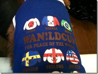 Wanldcup