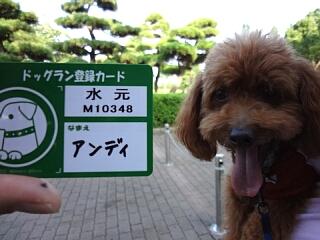 mizumoto5.jpg